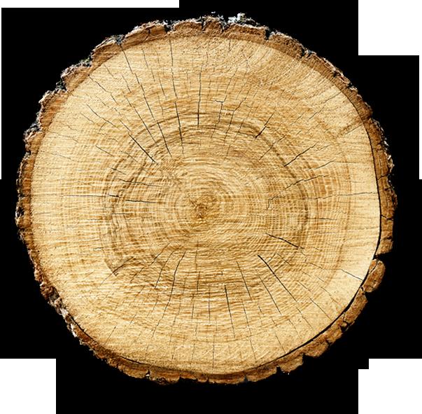 Caldaie a biomassa conviene costi e risparmio delle for Caldaia a metano o pellet cosa conviene